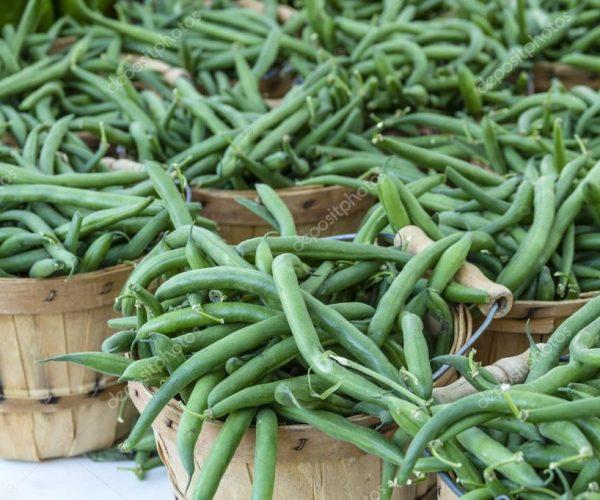Green Beans depositphotos_80991716-stock-photo